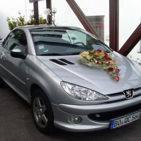 Fahrzeugdekoration (6)
